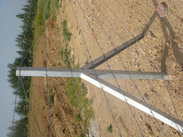刺铁丝隔离栅